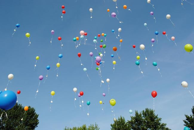 Herts County Council is considering banning balloon launches from its sites