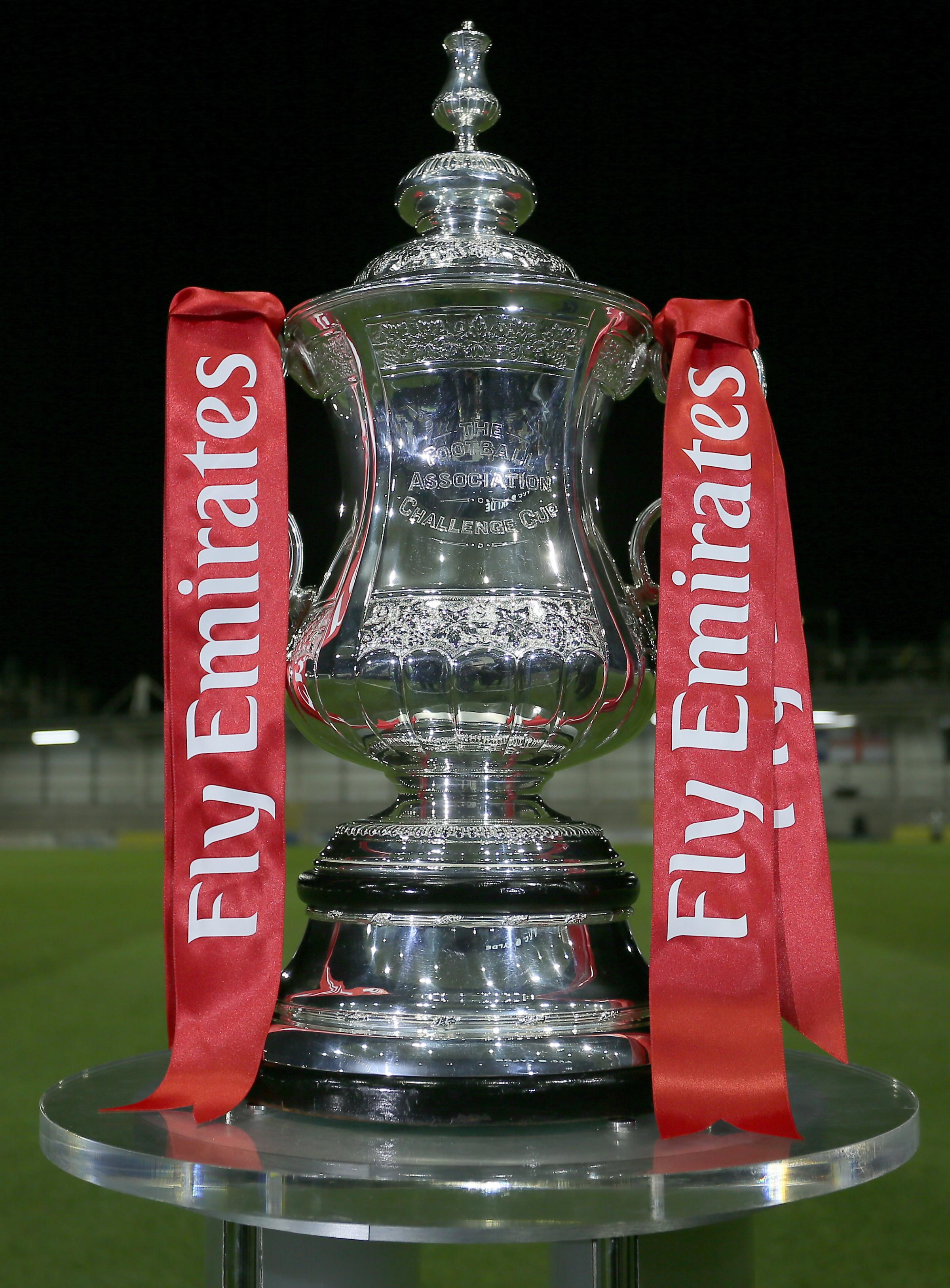 Saints will be at home in FA Cup fifth round...if they beat Spurs