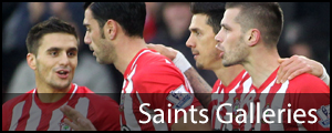 Daily Echo: Saints Galleries