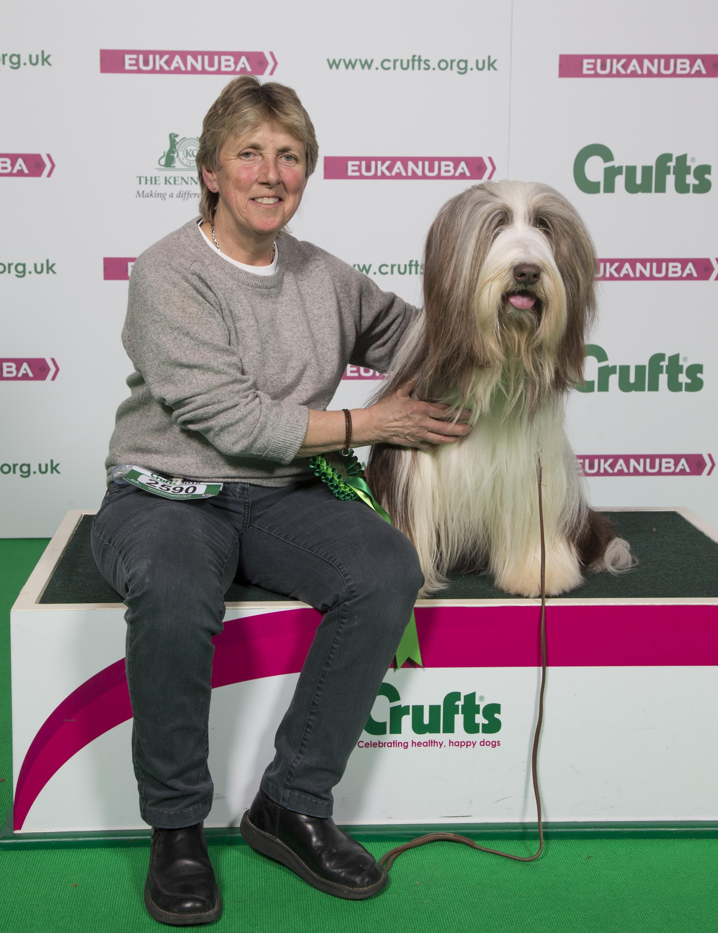 Marilyn Baker with Braidy her Bearded Collie who won best of breed at Crufts . credit: Flick.digital
